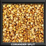 Coriander Split